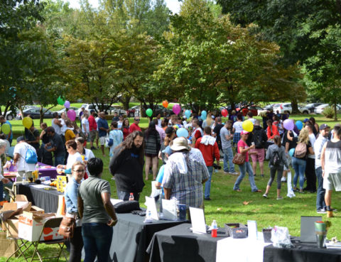 A large crowd gathers for Recovery Day Lancaster 2018 in a green park.