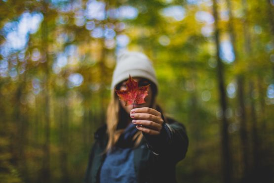 Against a slightly blurry background of green forest, a female figure in warm coat and hat holds a red leaf up in fron of their face.