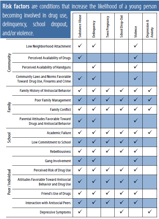 A chart of the risk factors for addiction, mental illness, violence, and other issues.